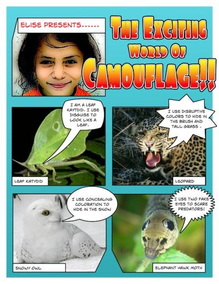 http://oakdome.com/k5/lesson-plans/comic-life/camouflage-comic-strip.php